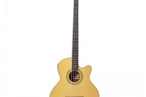 Gitar ve Keman Ölçüleri